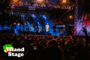 311 and audience